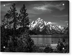 Mt. Moran And Trees Acrylic Print