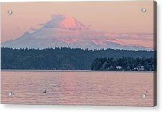 Mt. Rainier At Sunset Acrylic Print