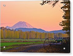 Mt Rainier From The Redmond Valley Acrylic Print by Alvin Kroon