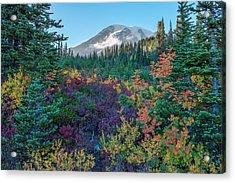 Mt Rainier With Autumn Colors Acrylic Print