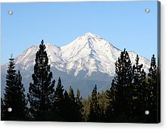 Mt. Shasta - Her Majesty Acrylic Print by Holly Ethan