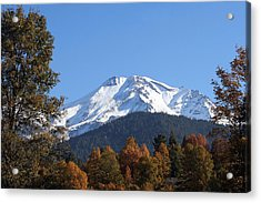 Acrylic Print featuring the photograph Mt. Shasta Framed by Holly Ethan