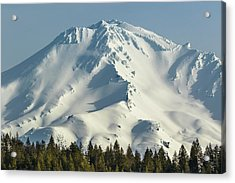 Acrylic Print featuring the photograph Mt Shasta In Early Morning Light by Marc Crumpler