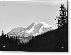 Mt Shasta Acrylic Print