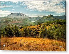 Mt St Helens I Acrylic Print by Brian Harig