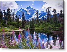 Mt. Shuksan Acrylic Print