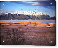 Mt. Timpanogos And Utah Lake Acrylic Print