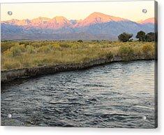 Mt Tom Sunrise Acrylic Print by Troy Montemayor