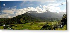 Mt. Waialeale Acrylic Print