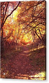Mueller Park In The Fall Acrylic Print
