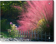 Acrylic Print featuring the photograph Muhly Grass by Kathryn Meyer