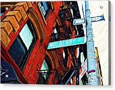 Mulberry Street Sketch Acrylic Print by Randy Aveille