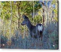 Mule Deer A Stylized Landscape By Frank Lee Hawkins Acrylic Print