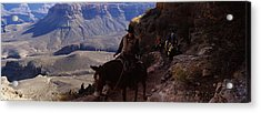 Mule Riders And Hikers On The Trail Acrylic Print by Panoramic Images