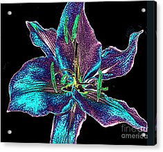 Multi-color Lily - Digital Painting Acrylic Print by Merton Allen