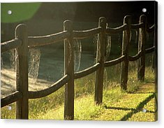 Multiple Spiderwebs On Wooden Fence Acrylic Print