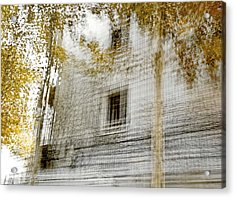 Acrylic Print featuring the photograph Multiplex Fall by Linde Townsend
