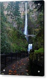 Multnomah Falls - Fall Begins Acrylic Print