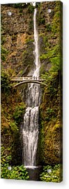Acrylic Print featuring the photograph Multnomah Falls  by Claudia Abbott