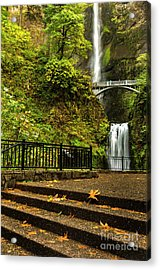 Multnomah Falls,oregon Acrylic Print