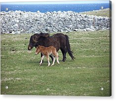 Mum And Daughter On A Windy Day Acrylic Print by George Leask
