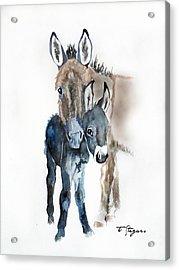 Mummy Donkey Acrylic Print