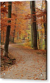 Munich Foliage Acrylic Print by Frenzypic By Chris Hoefer