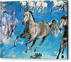 mural detail Equus Descending  Acrylic Print by Tim  Heimdal