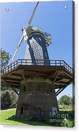 Murphy Windmill San Francisco Golden Gate Park San Francisco California Dsc6337 Acrylic Print