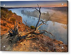 Murray River Dawn Acrylic Print by Bill  Robinson