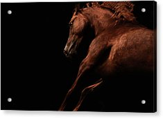 Muscle And Motion Acrylic Print