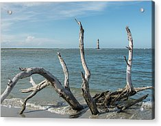 Muse Acrylic Print by Ed Waldrop