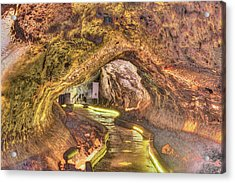 Mushpot Cave Acrylic Print by Richard J Cassato