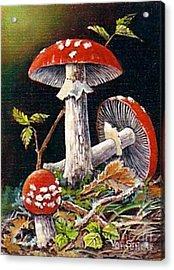 Mushroom Magic Acrylic Print by Val Stokes