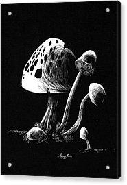 Mushroom Patch Acrylic Print by Morgan Banks