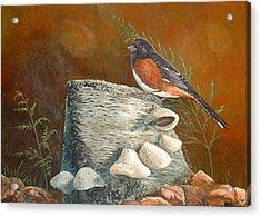 Mushroom Stump Acrylic Print