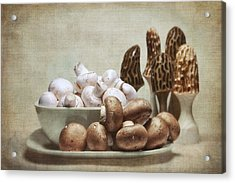 Mushrooms And Carvings Acrylic Print
