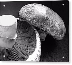 Mushrooms In Black And White Acrylic Print