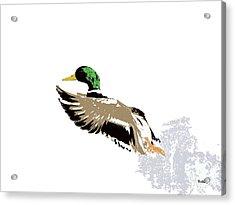 Acrylic Print featuring the digital art Music Notes 22 by David Bridburg