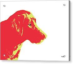 Acrylic Print featuring the digital art Music Notes 6 by David Bridburg