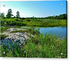 Acrylic Print featuring the photograph Muskoka Ontario 4 by Claire Bull