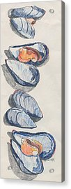 Mussels Acrylic Print