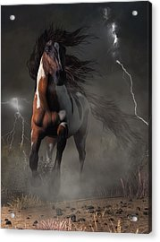 Mustang Horse In A Storm Acrylic Print
