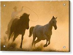 Mustang Roundup Acrylic Print