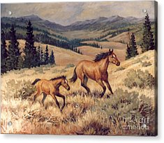 Mustangs      Mare And Foal Escaping Acrylic Print by JoAnne Corpany