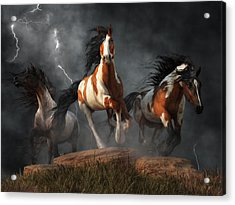 Mustangs Of The Storm Acrylic Print by Daniel Eskridge