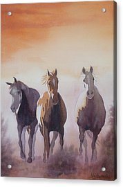 Mustangs Out Of The Fire Acrylic Print by Ally Benbrook