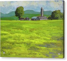Mustard Fields Indiana Acrylic Print by Nora Sallows