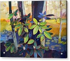 My Back Yard Acrylic Print by Farhan Abouassali