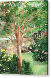 Acrylic Print featuring the painting My Backyard by Vicki  Housel